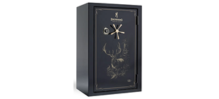 Picture for category Safes and Cases